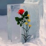 IceFlower01-150x150