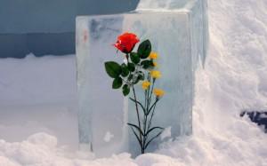 IceFlower01-300x187